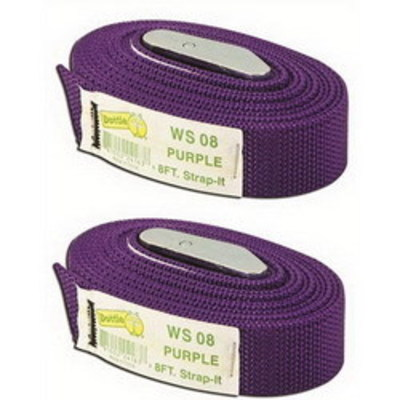 Dottie Co L.h. 2WS08 L.H. Dottie 2WS08 PC 6775 Tie-Down Web Strap With Buckle; Nylon, Purple, 8 ft Length x 1 Inch Width