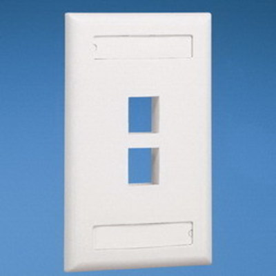 Panduit NK2FWHY Panduit NK2FWHY NetKey® 1-Gang Flat Faceplate; Screw, (2) UTP, STP, Fiber-Optic, A/V Port, ABS, White